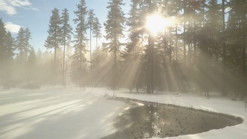 Sunny drone shot