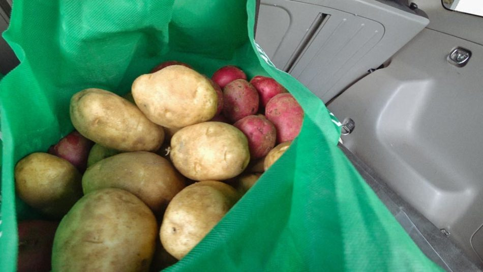 free farm ugly vegetable potato